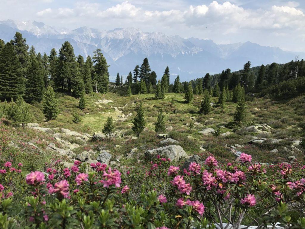 Hüttenwanderungen Innsbruck - der Inntaler Höhenweg mit bester Sicht auf das Karwendel