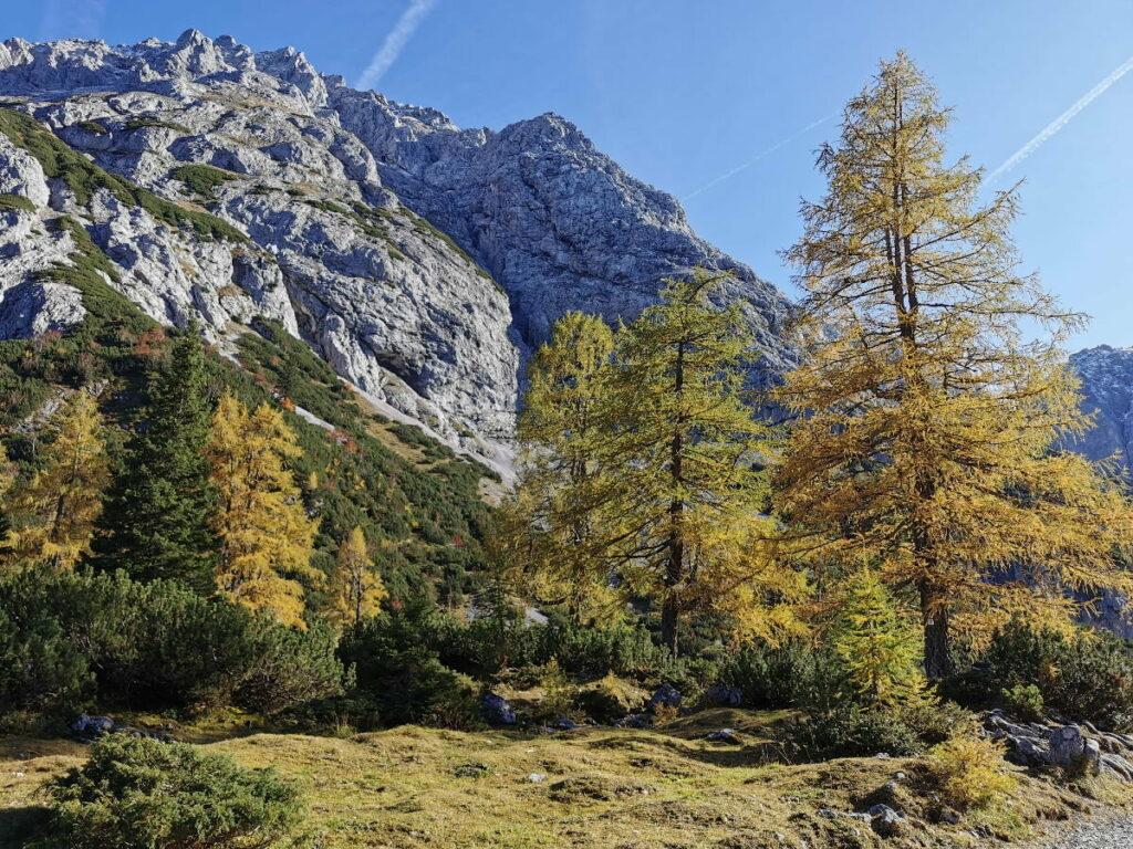 Im Herbst Urlaub die goldgelben Lärchen bewundern