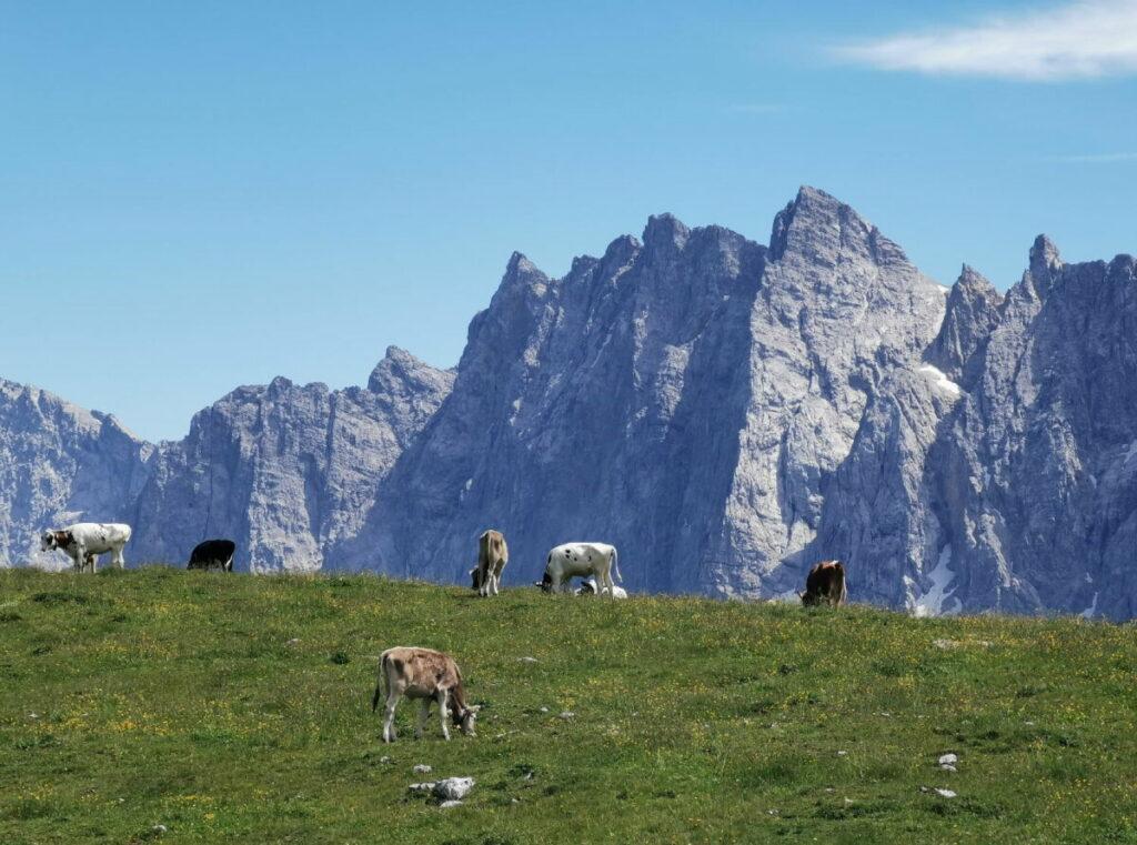Der Hochalmsattel beim Karwendelhaus - zwischen Karwendeltal und kleiner Ahornboden, mit dem Blick zu den Laliderer Wänden