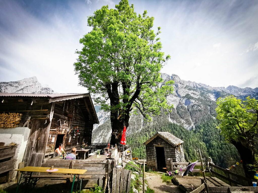 Urige Ganalm im Karwendel