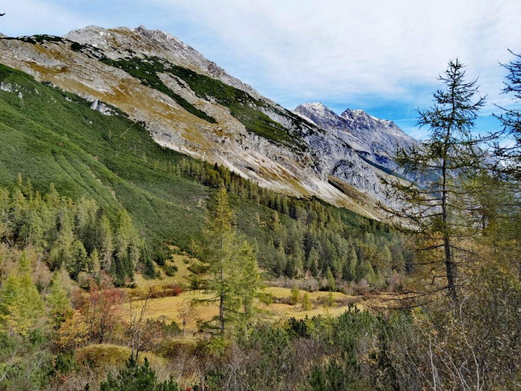 Ein schöner Ort: Der Issanger, weit oben im Halltal, noch oberhalb der Herrenhäuser im Karwendel