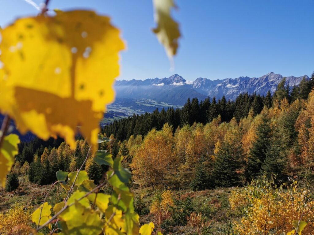 Pill Österreich - so farbig ist der Herbst am Kellerjoch