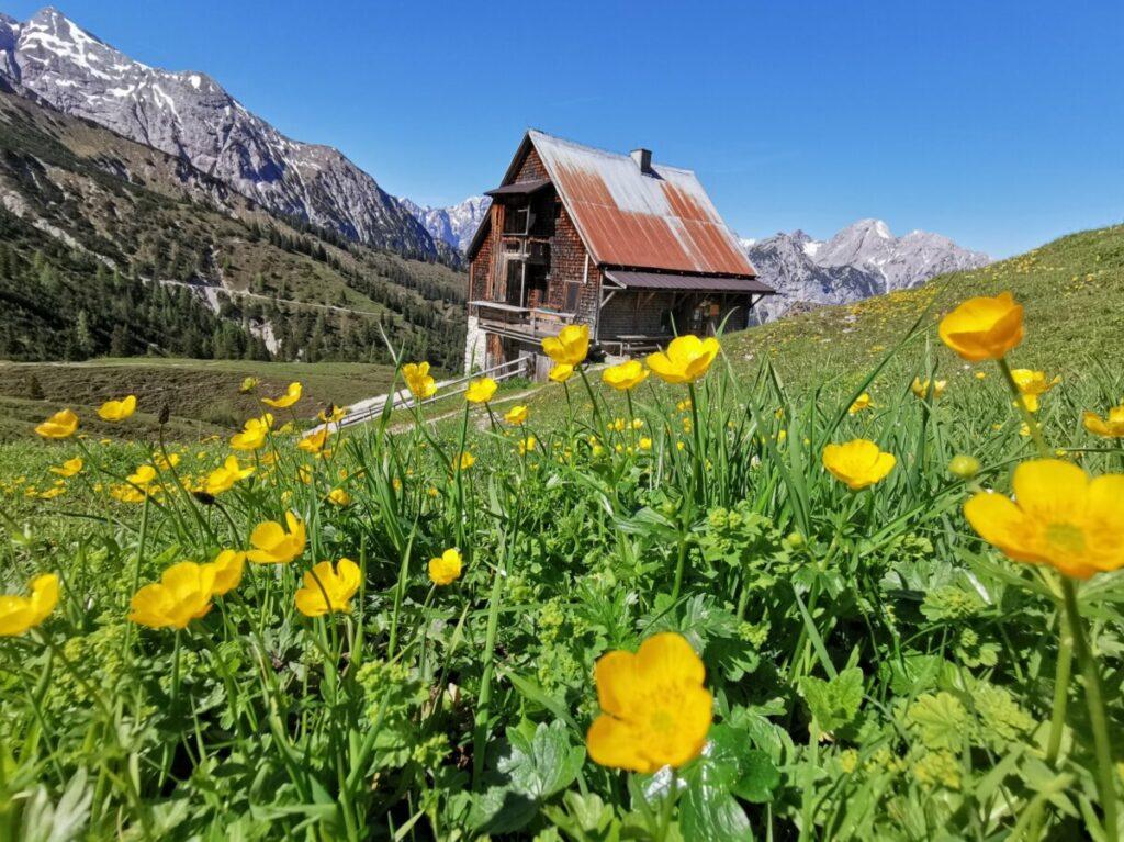 Einmalig schön liegt die Plumsjochhuette im Karwendel