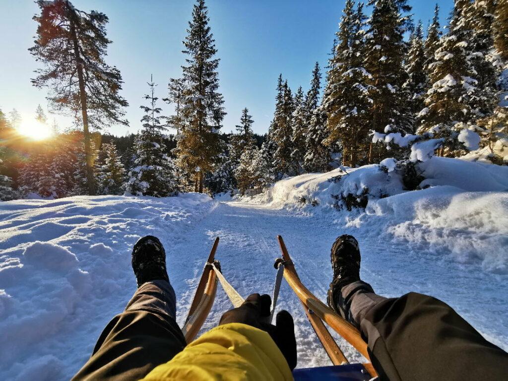 Rodelbahn Karwendel - Durch die verschneite Winterlandschaft rodeln und die Natur im Karwendel geniessen