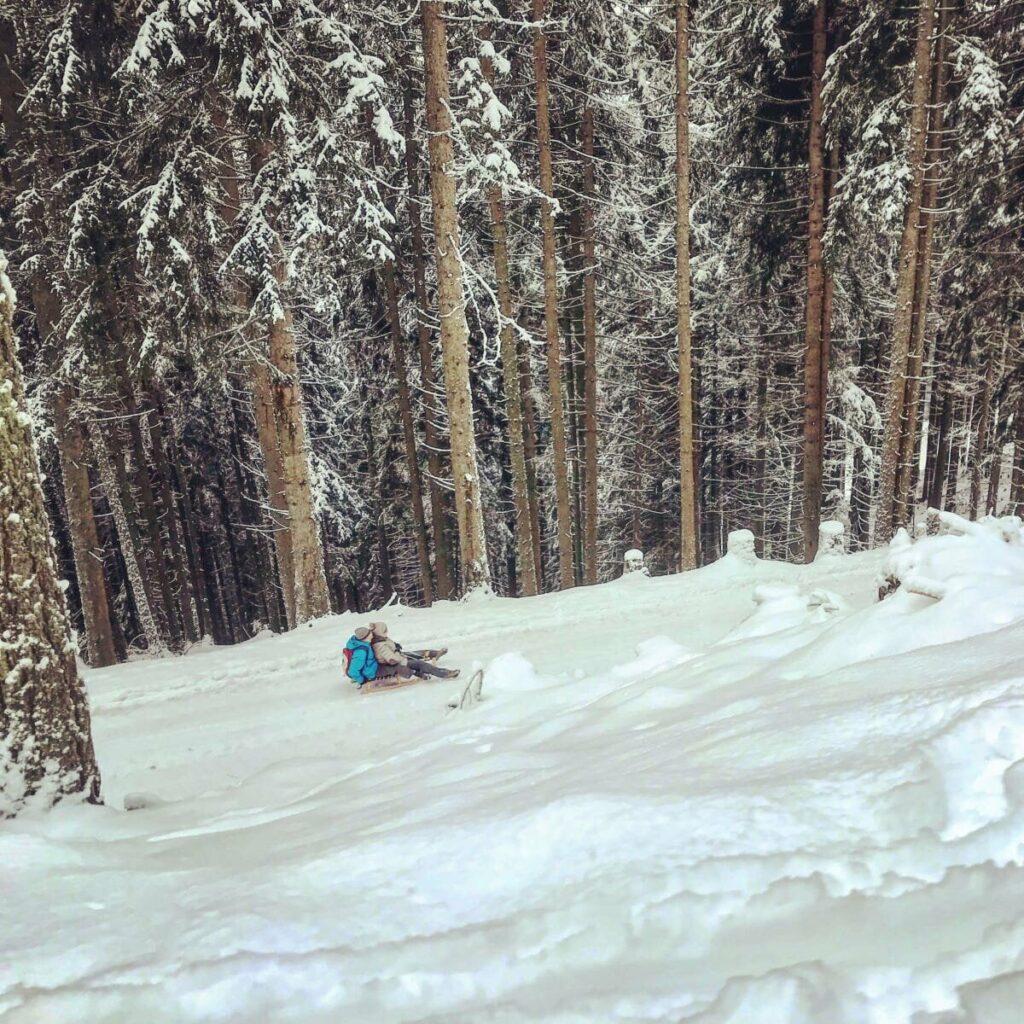 Rodeln Tegernsee - ein Traum beim Schlittenfahren in Bayern