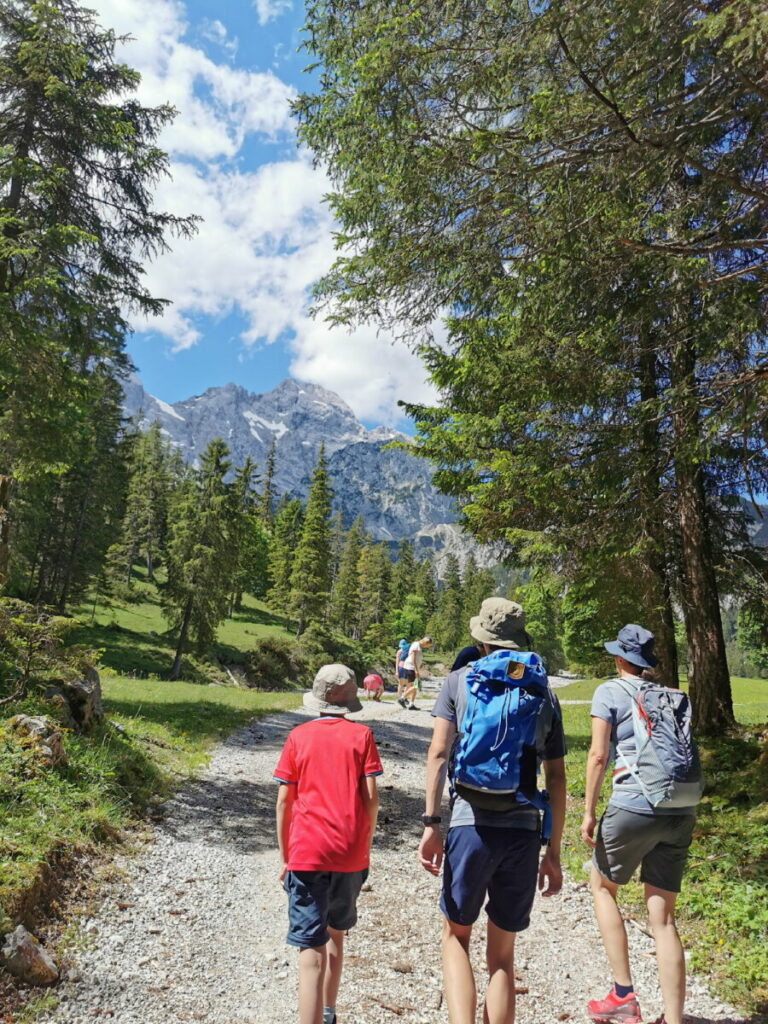 Unten führt die Wanderung durchs Rontal im Wald - oben bei der Rontalalm lichtet sich der Wald