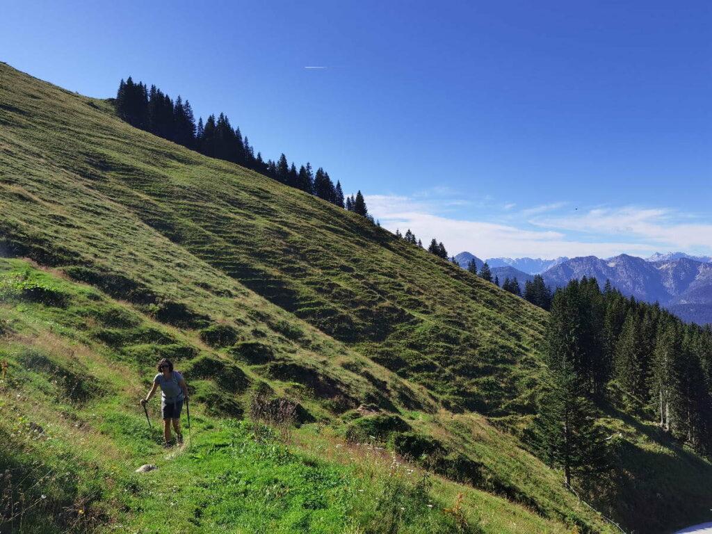 Ausblick bei der Roßsteinalm in Richtung Karwendel