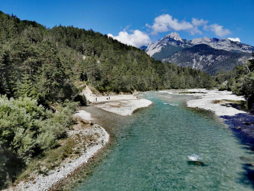 Entdecke die tolle Landschaft direkt neben dem Isarradweg