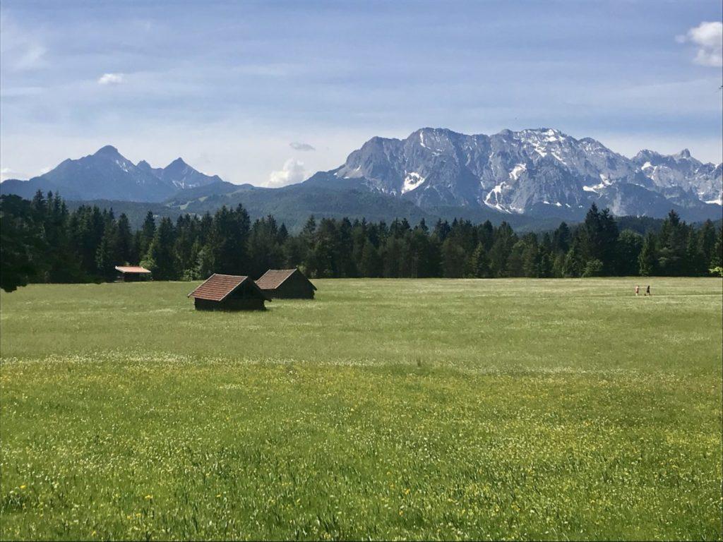 Wallgau wandern - über den Wiesen erheben sich die Gipfel des Wettersteingebirge
