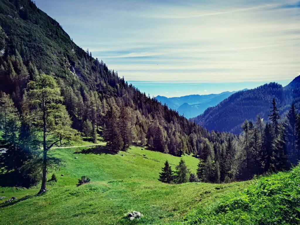 Der Blick aus dem Weissenbachtal