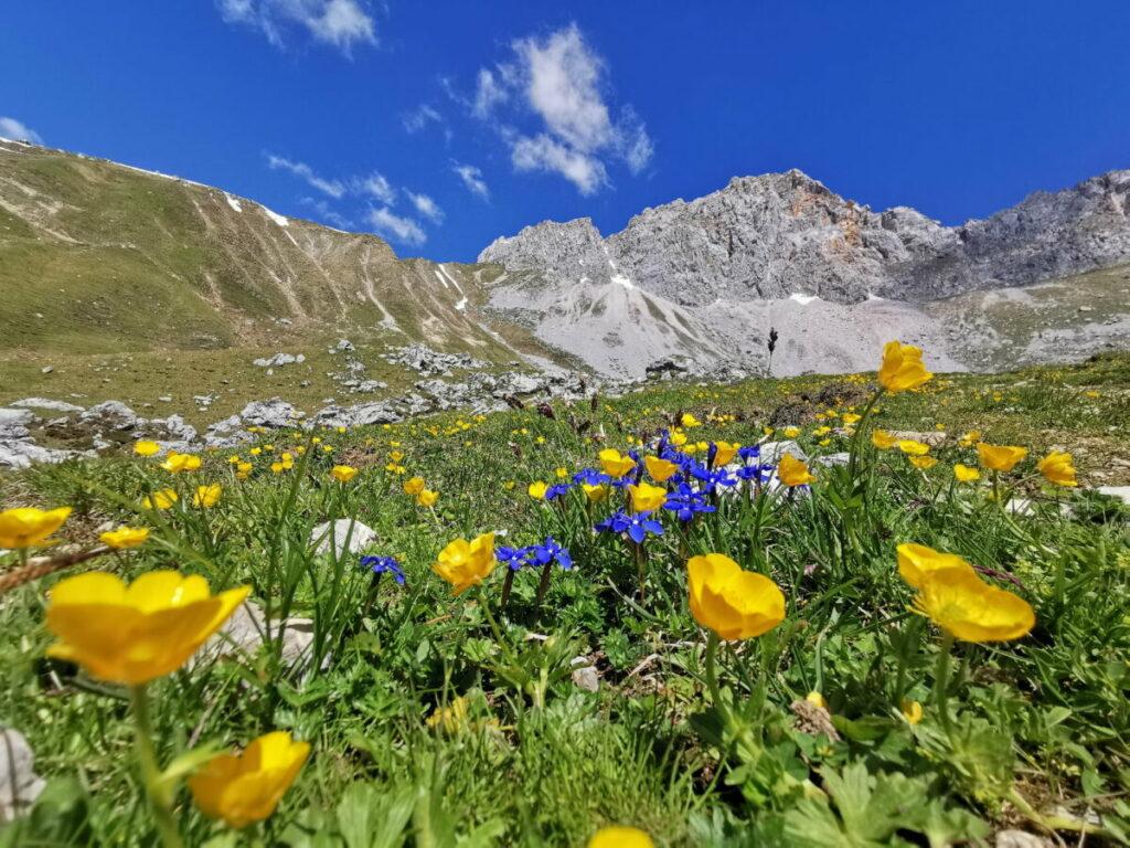 Imposantes Wettersteingebirge auf dem Weg zum Scharnitzjoch