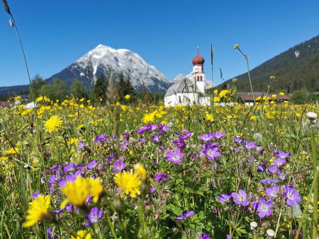 Das Wettersteingebirge im Frühling, in der schönen Leutasch
